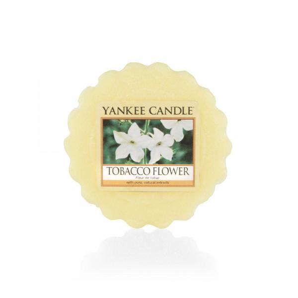 Yankee_1533706E_tobacco_flower_melt_2000x2000