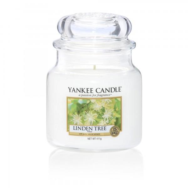 Yankee_1542831e_linden_tree_mittel_2000x2000